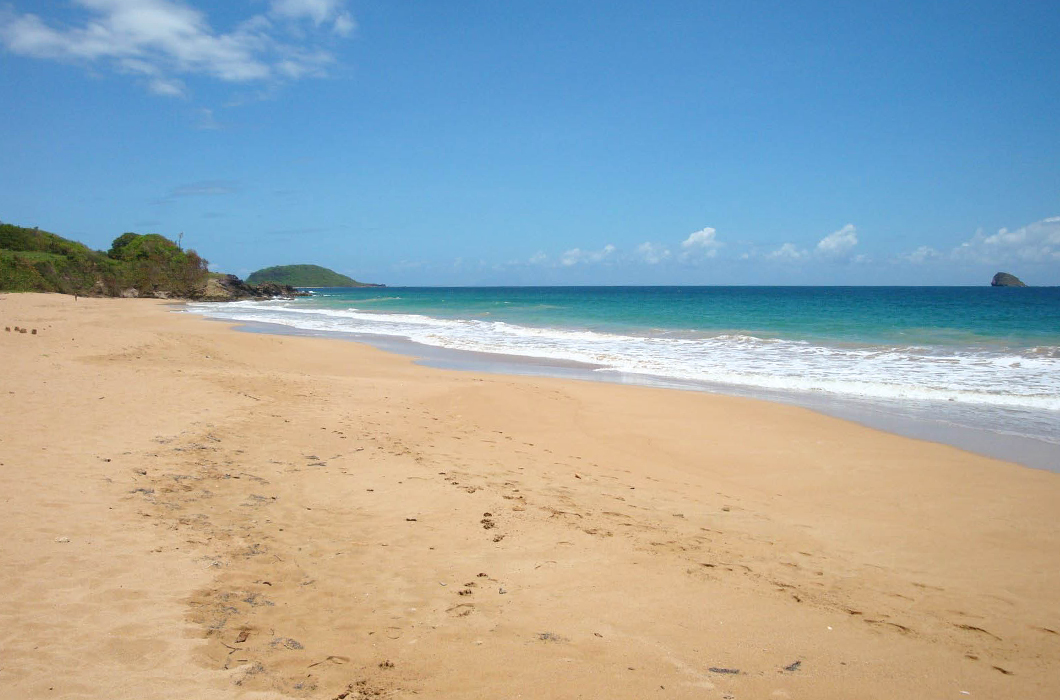 plage-de-clugny-guadeloupe-sauvage-intense-sable-belle-ombre-kawan