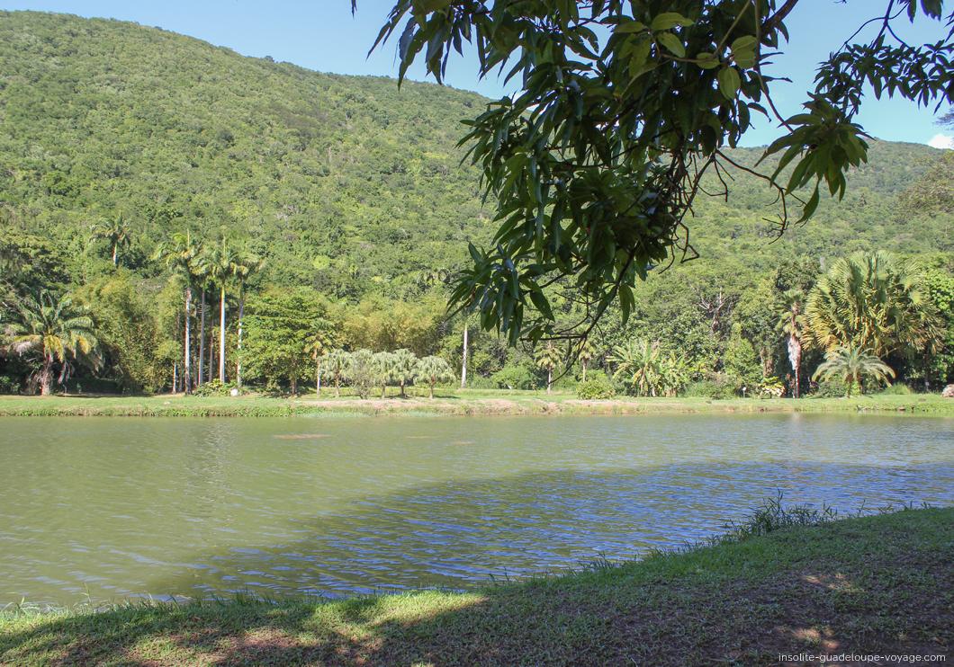 parc-aquacole-ecloserie-lac-ponte-noire-ouassous