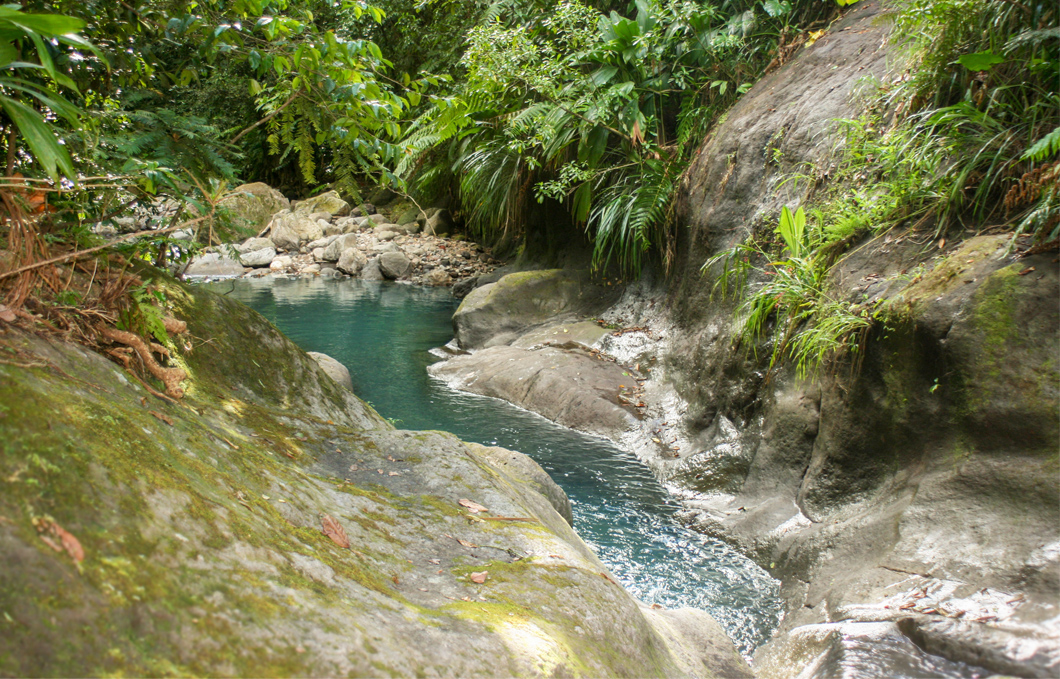 bassins-bleus-riviere-galion-rando-jungle-cascade-foret-basse-terre-insolite-guadeloupe-sentier-trace-roche-lisse-toboggan-naturel