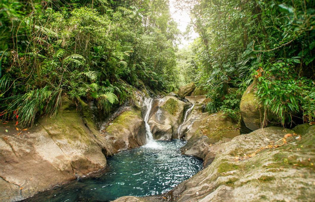 bassins-bleus-riviere-galion-rando-jungle-cascade-foret-basse-terre-insolite-guadeloupe-sentier-trace