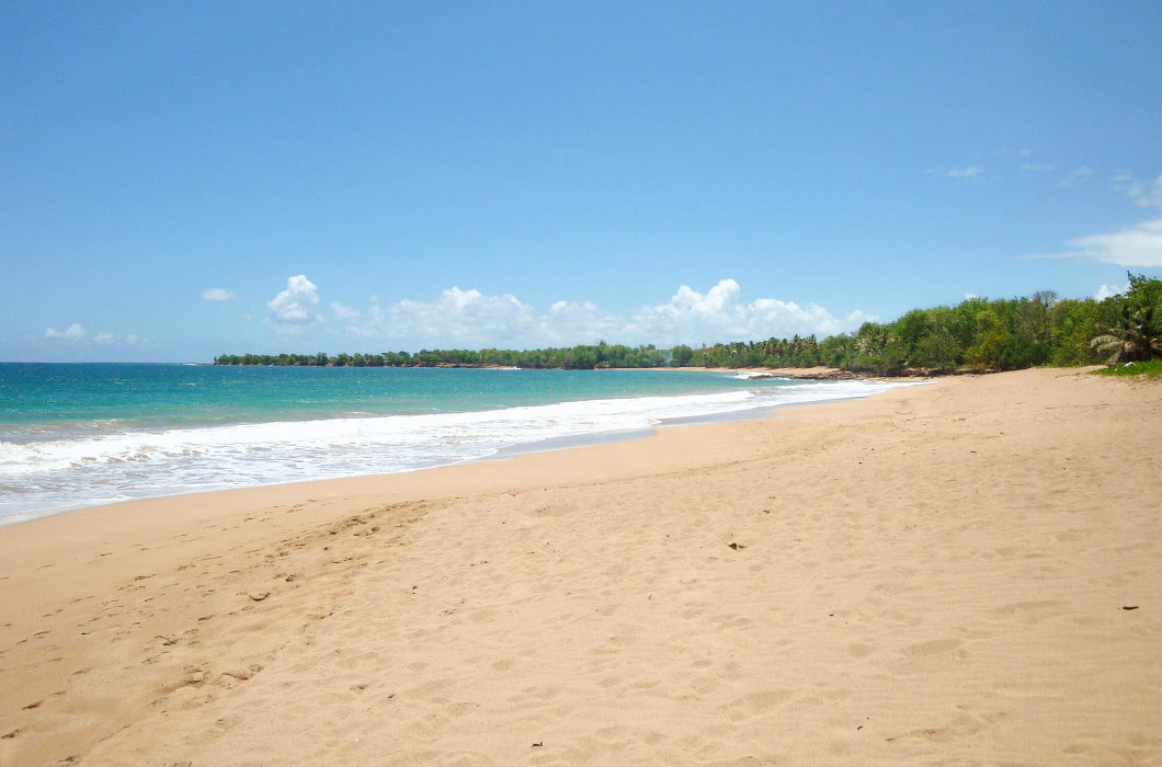 plage-de-clugny-guadeloupe-sauvage-intense-sable-belle-ombre-recif