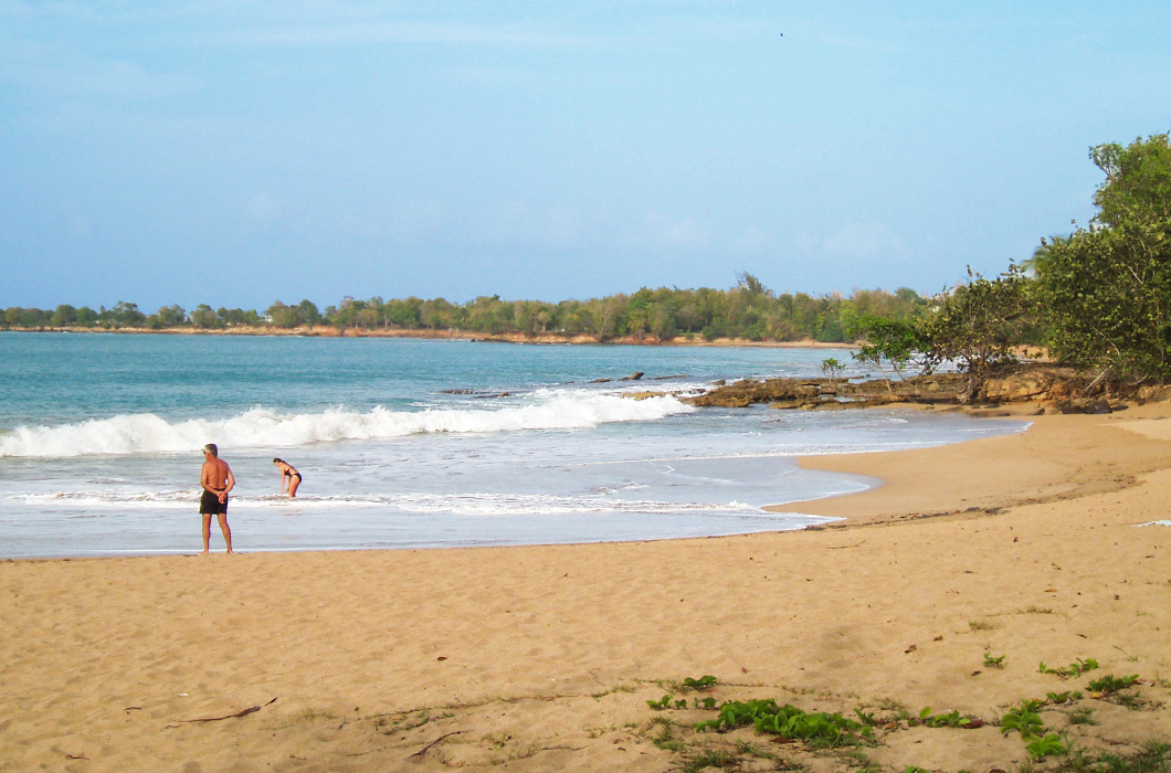 plage-de-clugny-guadeloupe-sauvage-intense-sable-belle-ombre