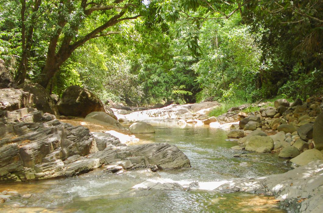saut-d-acomat-cascade-bassin-riviere-saut-baignade-guadeloupe-insolite-voyage-caraibes-riviere