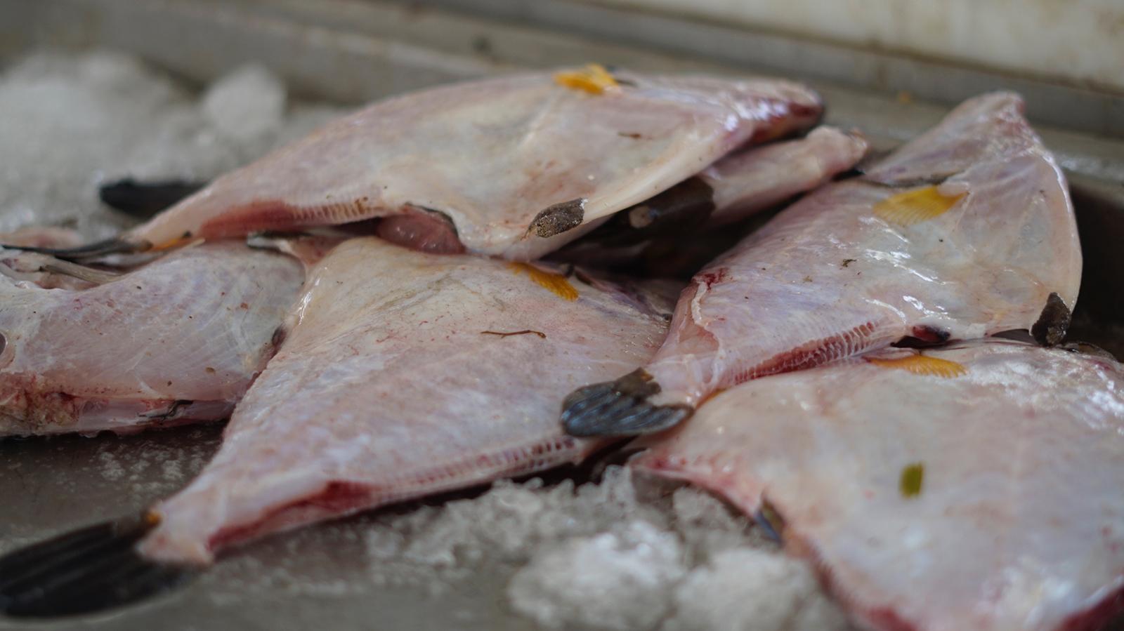 filets de poisson-lions-Guadeloupe-Marché au poisson de Baille-Argent