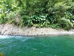 Excurssion-randonnee-cascade-ravine-paradis-grande-riviere-vieux-habitant-guadeloupe-guide-insolite-vue-roche-basaltiques